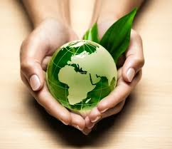 Green and Toxin Free Household Tips